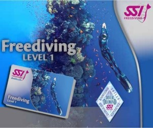 Level-1 SSI Freediving cursus Enker @ The Wave | Hillegom | Zuid-Holland | Nederland