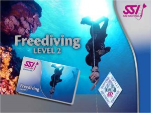 Level-2 SSI Freediving cursus Enker @ The Wave | Hillegom | Zuid-Holland | Nederland